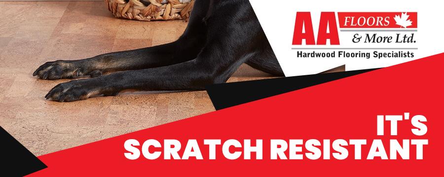 It's Scratch-Resistant