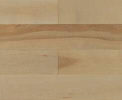 TORLYS SuperSolid 6 Series Hardwood - ISLAND VIEW BIRCH
