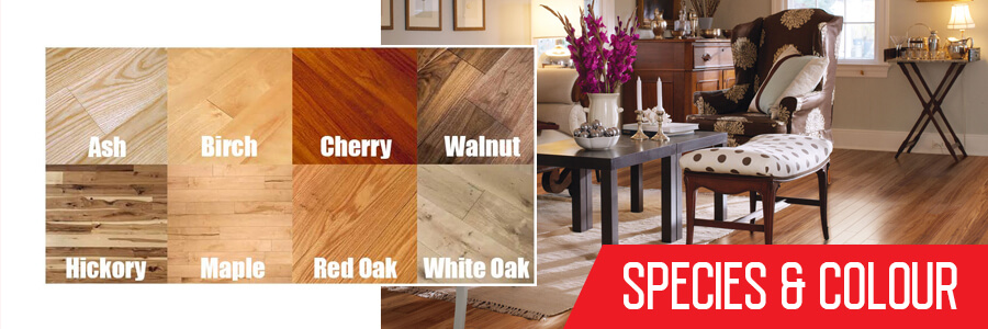 Wood Flooring Species and Colour