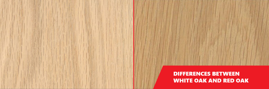 Differences Between White Oak And Red Oak